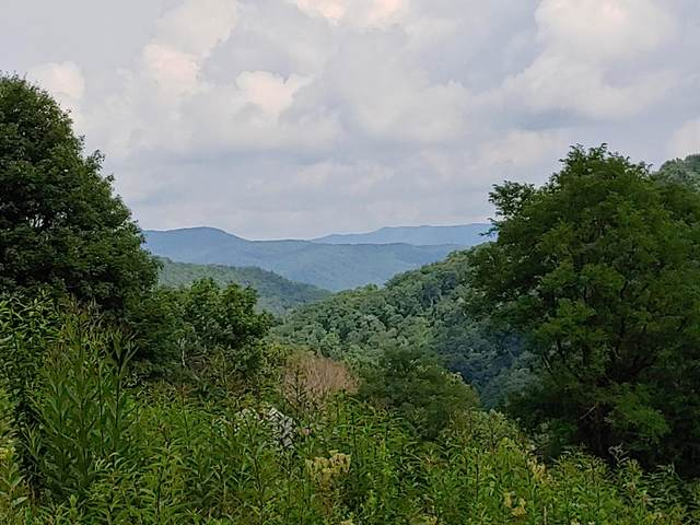 Lot 36 Windcrest Trail, Roan Mountain, TN 37687 (MLS #9911365) :: Highlands Realty, Inc.