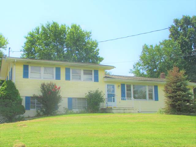 274 Elm Lane, Bluff City, TN 37618 (MLS #9912082) :: Bridge Pointe Real Estate