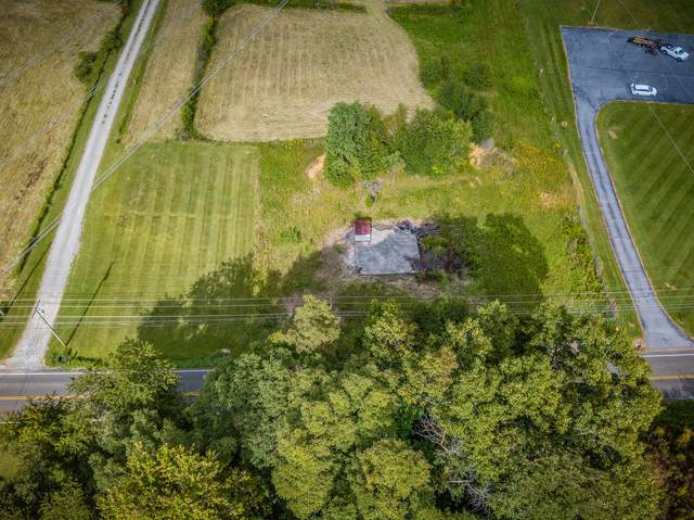 431 Highway 93, Fall Branch, TN 37656 (MLS #9912543) :: Tim Stout Group Tri-Cities