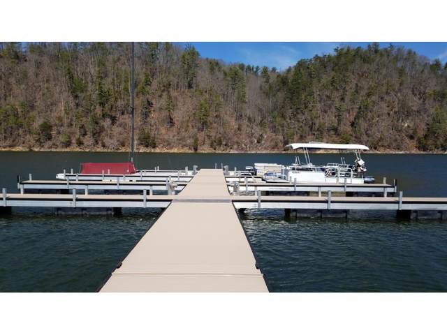 000 Hickory Circle, Butler, TN 37640 (MLS #9913813) :: Bridge Pointe Real Estate