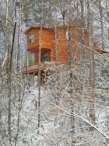 Address Not Published, Roan Mountain, TN 37687 (MLS #9914555) :: Tim Stout Group Tri-Cities