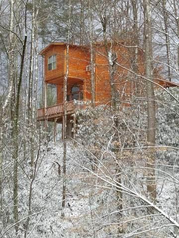 Address Not Published, Roan Mountain, TN 37687 (MLS #9914555) :: Bridge Pointe Real Estate