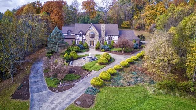 535 Isley Drive, Blountville, TN 37617 (MLS #9914605) :: Conservus Real Estate Group