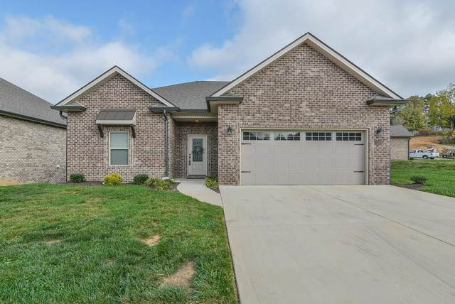 203 Ripple Falls Private Drive, Gray, TN 37615 (MLS #9914709) :: The Lusk Team