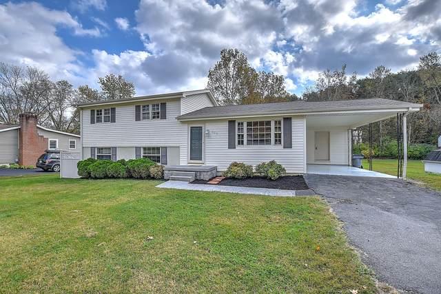 205 Cedar Valley Road, Bristol, TN 37620 (MLS #9914831) :: Conservus Real Estate Group