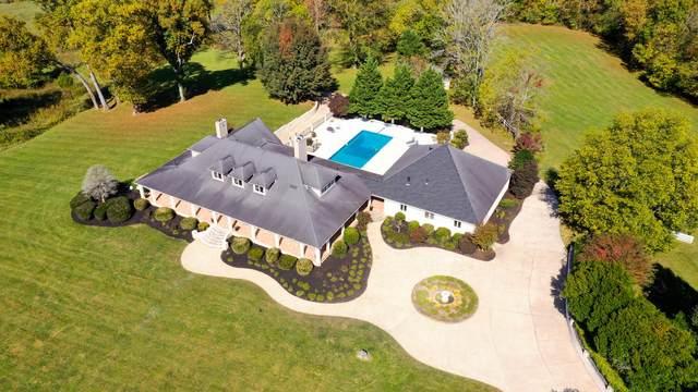 217 Brobeck Road, Limestone, TN 37681 (MLS #9915294) :: Conservus Real Estate Group