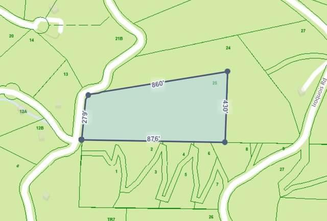 Tbd Callalantee Drive, Mountain City, TN 37683 (MLS #9916047) :: Bridge Pointe Real Estate