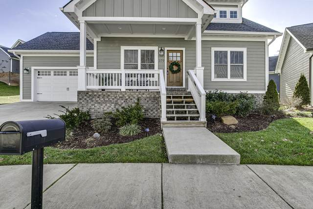 379 Princeton Gardens Drive, Johnson City, TN 37601 (MLS #9916331) :: Red Door Agency, LLC