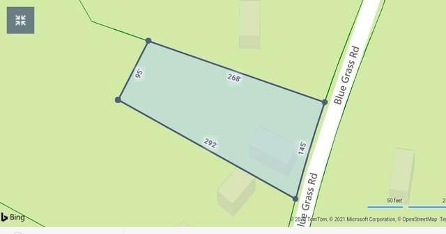 00 Blue Grass Road, Roan Mountain, TN 37687 (MLS #9917134) :: Bridge Pointe Real Estate