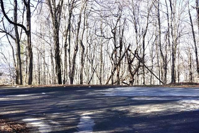 Lot 39 Foxfire Trail, Kingsport, TN 37664 (MLS #9917145) :: Conservus Real Estate Group