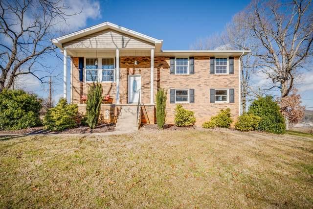 4028 Black Oak Drive, Kingsport, TN 37660 (MLS #9917538) :: Highlands Realty, Inc.