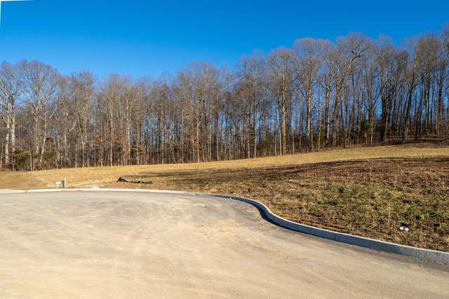 Lt. 40 Brady Way, Jonesborough, TN 37659 (MLS #9917655) :: The Lusk Team