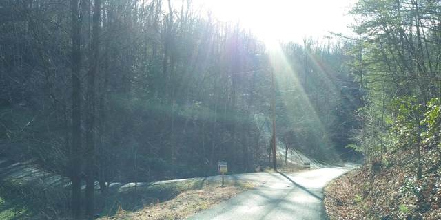 Tbd Red Bud Road, Sevierville, TN 37876 (MLS #9917666) :: Red Door Agency, LLC
