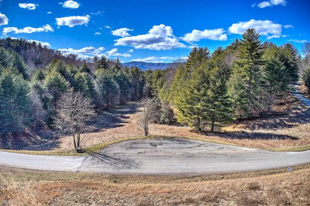 Tbd Laurel Way, Mountain City, TN 37683 (MLS #9917946) :: Conservus Real Estate Group