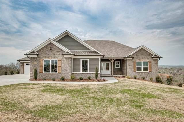 1332 Panoramic Vista, Gray, TN 37615 (MLS #9919154) :: Bridge Pointe Real Estate
