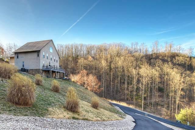 506 Rock Island Drive, Butler, TN 37640 (MLS #9919187) :: Conservus Real Estate Group