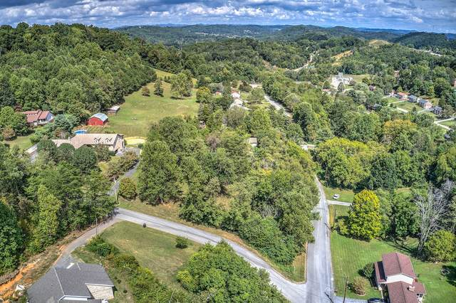 Tbd Windsor Forest Drive, Kingsport, TN 37663 (MLS #9919721) :: Tim Stout Group Tri-Cities