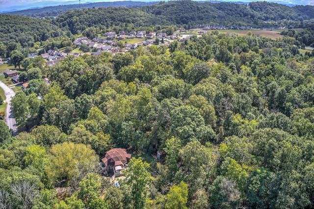 Tbd Windsor Forest Drive, Kingsport, TN 37663 (MLS #9919723) :: Tim Stout Group Tri-Cities