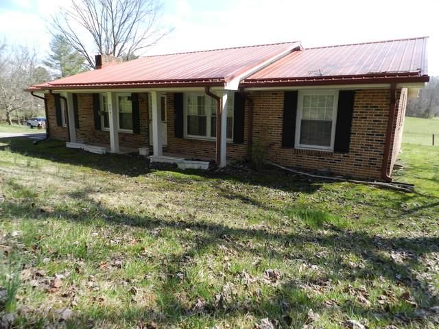 729 Bluff Road, Kingsport, TN 37664 (MLS #9920521) :: Tim Stout Group Tri-Cities