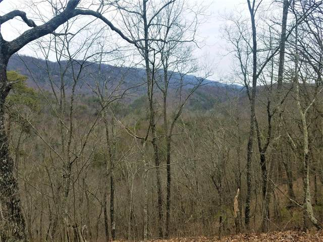 180 Midway Church Road, Mooresburg, TN 37811 (MLS #9920862) :: Tim Stout Group Tri-Cities