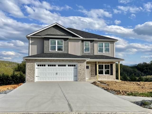 143 Mountain View Circle, Piney Flats, TN 37686 (MLS #9921098) :: Conservus Real Estate Group
