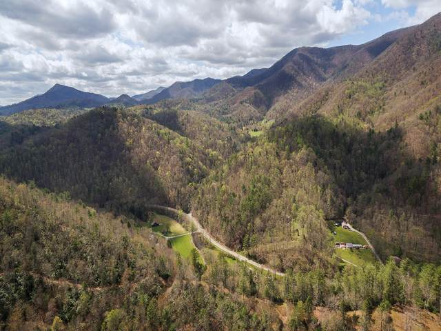 199 Gunsmoke Mountain Rd, Erwin, TN 37650 (MLS #9921123) :: Tim Stout Group Tri-Cities