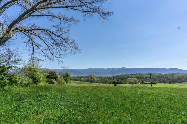 107 Cutoff, Afton, TN 37616 (MLS #9921284) :: Conservus Real Estate Group