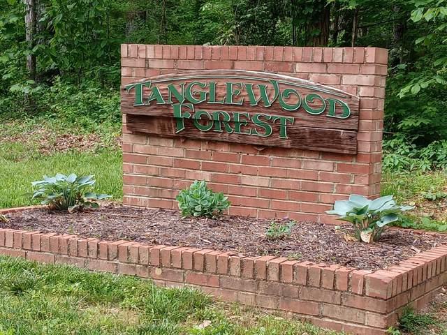 Tbd Dover Avenue, Mount Carmel, TN 37645 (MLS #9922208) :: Red Door Agency, LLC