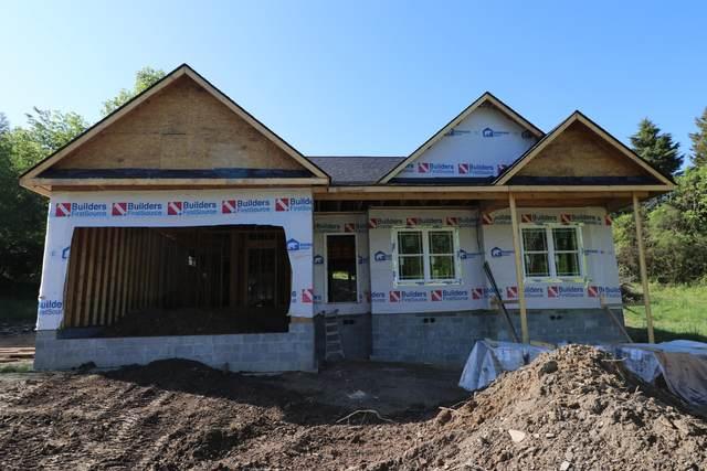 822 Cedar Branch Rd, Kingsport, TN 37664 (MLS #9922367) :: Red Door Agency, LLC
