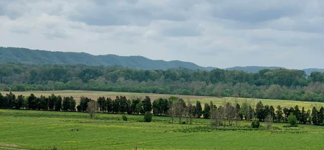0 Ridge Haven Drive, Surgoinsville, TN 37873 (MLS #9922534) :: Conservus Real Estate Group