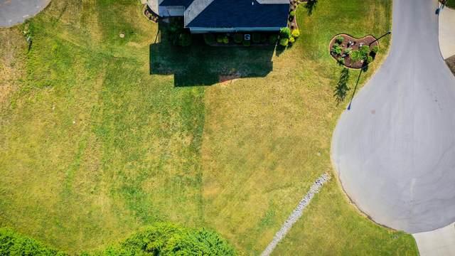 242 Riverwatch Circle, Kingsport, TN 37660 (MLS #9923036) :: Red Door Agency, LLC