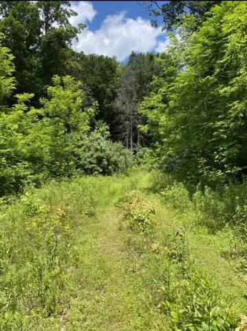 Tbd Highway 159, Bulter, TN 37640 (MLS #9924196) :: Red Door Agency, LLC