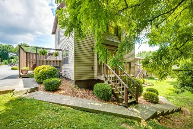509 Pilgrim Court #1, Johnson City, TN 37601 (MLS #9924908) :: Conservus Real Estate Group