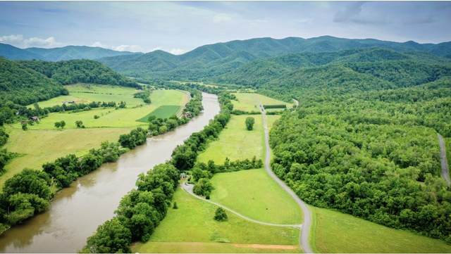 0 River Crest Way, Del Rio, TN 37727 (MLS #9925198) :: Tim Stout Group Tri-Cities
