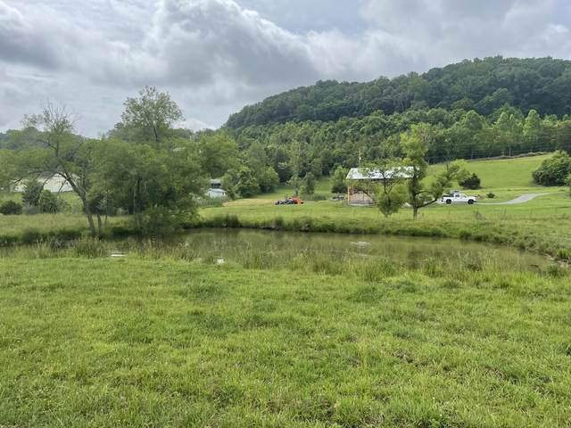 Tbd Wolfe Lane, Mount Carmel, TN 37645 (MLS #9925928) :: Highlands Realty, Inc.