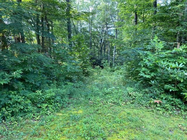 704 Heartwood Lane, Butler, TN 37640 (MLS #9925947) :: Highlands Realty, Inc.