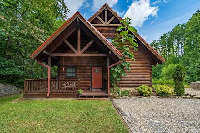102 Oak Point Place, Butler, TN 37640 (MLS #9926202) :: Red Door Agency, LLC