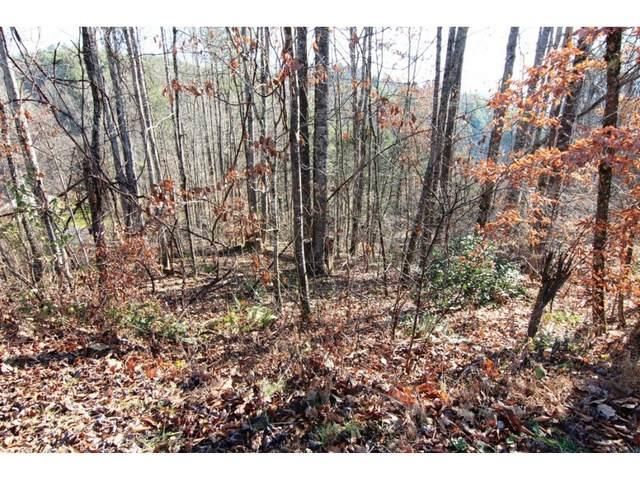 000 Hoot Owl Ridge Road, Mountain City, TN 37683 (MLS #9927342) :: Conservus Real Estate Group