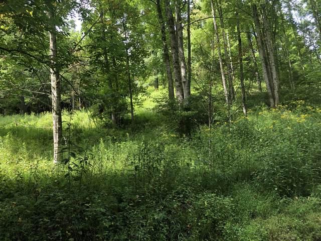 Tbd Ingram Branch Road, Roan Mountain, TN 37687 (MLS #9927540) :: Highlands Realty, Inc.
