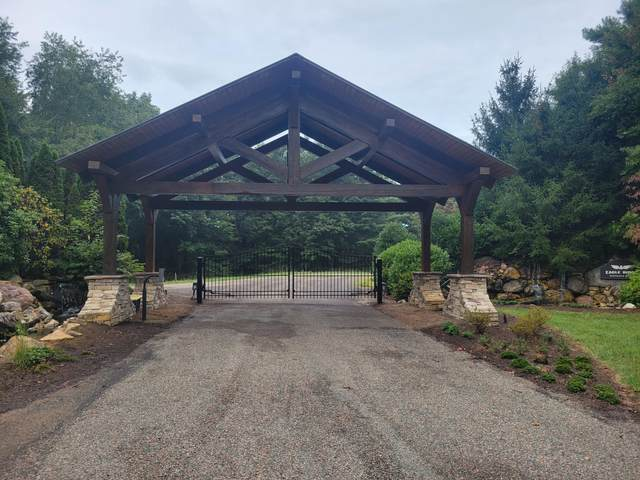 Tbd Of Dry Hill Road, Butler, TN 37640 (MLS #9928657) :: Bridge Pointe Real Estate