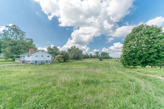 229 Old Stage Road, Gray, TN 37615 (MLS #9928717) :: Conservus Real Estate Group