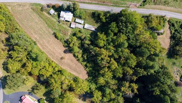 116 Butcher Valley Road, Rogersville, TN 37857 (MLS #9929319) :: Conservus Real Estate Group