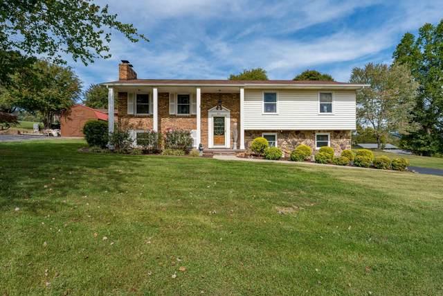 801 Redwood Drive, Mount Carmel, TN 37645 (MLS #9929490) :: Red Door Agency, LLC