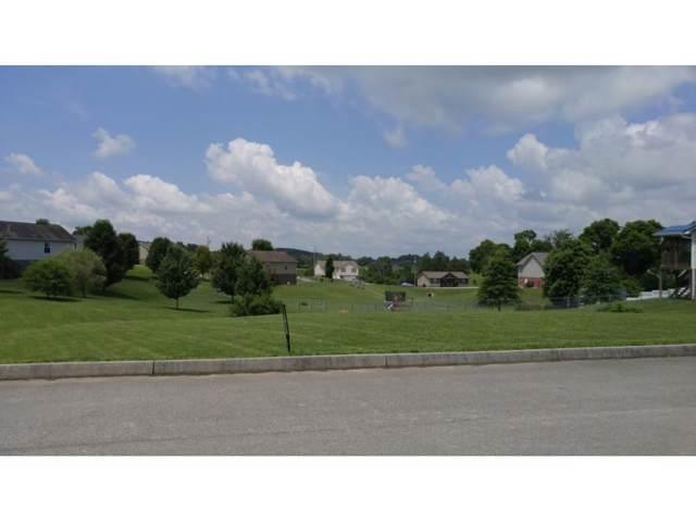 175 Bob White Court, Telford, TN 37690 (MLS #374137) :: Highlands Realty, Inc.