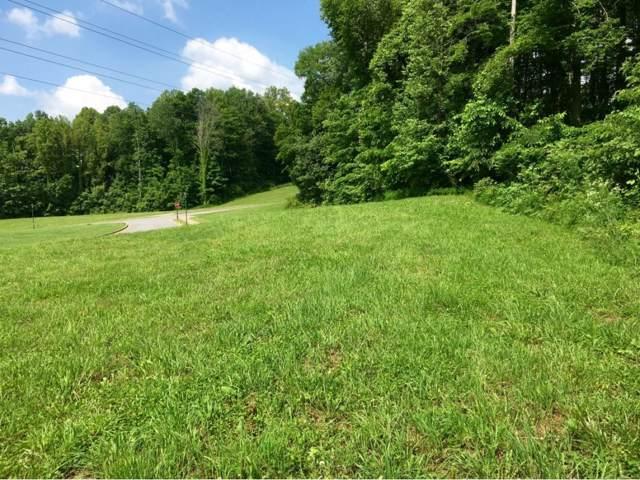 1111 Hawk Nest Court, Jonesborough, TN 37659 (MLS #378140) :: Red Door Agency, LLC