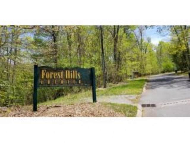 Tr 24 Mountain Laurel Court, Unicoi, TN 37692 (MLS #406044) :: Highlands Realty, Inc.