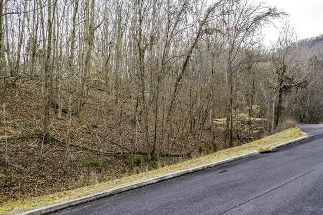 9039 Paradise View Drive, Mooresburg, TN 37811 (MLS #412971) :: Red Door Agency, LLC