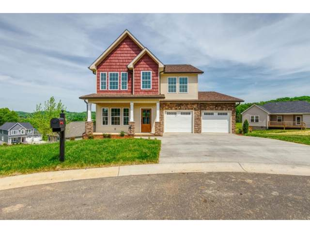 3217 Monroe Way, Kingsport, TN 37664 (MLS #420184) :: Conservus Real Estate Group