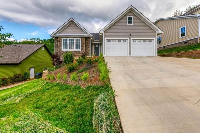 270 Old Island Trail, Kingsport, TN 37664 (MLS #421798) :: Conservus Real Estate Group