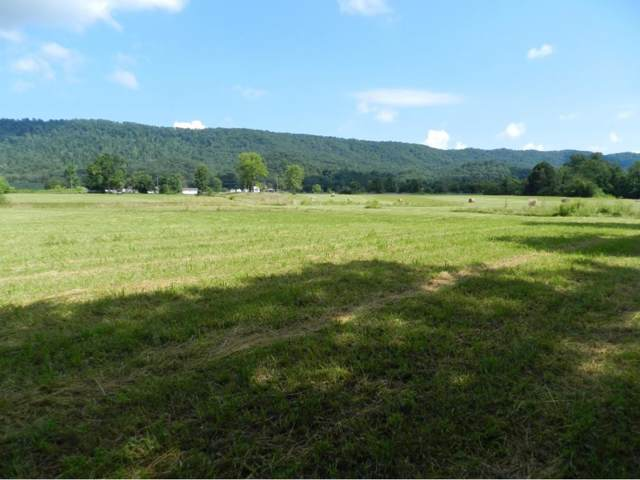 0 Beech Creek Road, Rogersville, TN 37857 (MLS #422960) :: Highlands Realty, Inc.